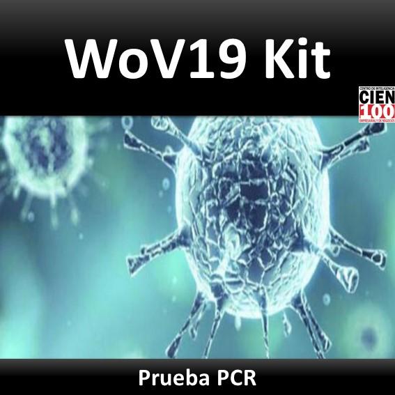 Prueba WoV19